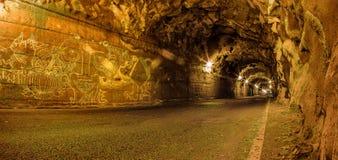 Tunel w maderze Zdjęcie Stock