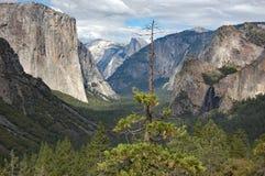 Tunelowy widok, Yosemite park narodowy obraz stock