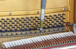 Tuner inside of a piano with little hammer Stock Image