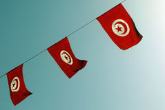 Tunesien-Flaggen tunesien Lizenzfreie Stockfotografie