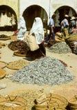 Tunesische markt Royalty-vrije Stock Foto's