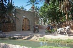 Tunesische oase royalty-vrije stock fotografie