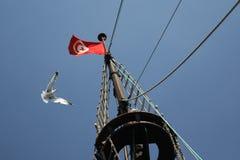 Tunezja flaga i seagull Obrazy Royalty Free