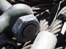 Tung rem för ståltrådrep royaltyfria bilder