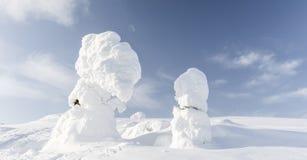 tung snow arkivbilder