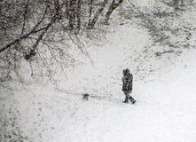 tung snow Arkivbild