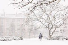 tunga snowfall Arkivbilder