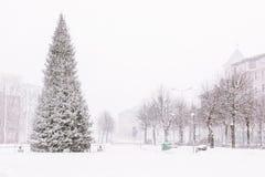 tunga snowfall Arkivfoton