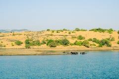 Tungarlimeer, Lonavala, Maharashtra, India royalty-vrije stock afbeeldingen