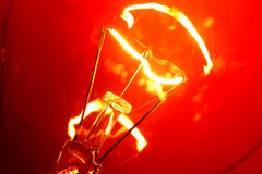 Tungsten Bulb Royalty Free Stock Photography