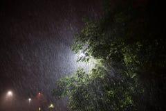 Tungt häftigt regn i sommarsäsong under gataljusen royaltyfri fotografi