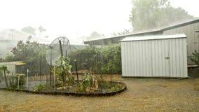 tungt regn Fotografering för Bildbyråer