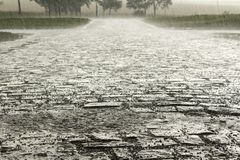 tungt regn arkivbilder