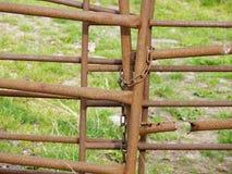 Tungt rostad brun metallport Fotografering för Bildbyråer