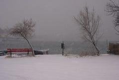 Tungt snöa Arkivfoto
