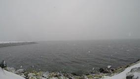 Tungt snöfall över den kalla fjorden i vinter med låg visibillity lager videofilmer