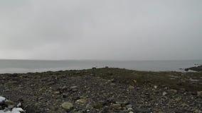 Tungt snöfall över den kalla fjorden i vinter med låg visibillity stock video