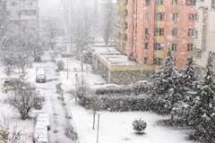 Tungt snöfall eller snöstorm arkivfoton