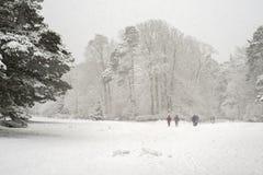 Tungt snöfall i en parkera arkivbild
