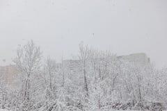Tungt snöfall i staden Gator hus, träd som täckas med snö royaltyfri bild
