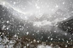 Tungt snöfall på ögat av hav sjön i Tatra berg royaltyfri bild