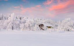 Tungt snöfall täckte träden och husen i bergvillen Royaltyfria Bilder