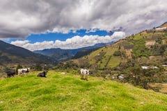 Tungurahua volcano day explosion Royalty Free Stock Photos
