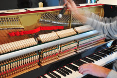 Tuning the piano. Close-up of the tuning of a piano royalty free stock image