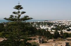 Tunis. Bird-eye view of Tunis, Tunisia Royalty Free Stock Image