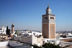 Tunis landskap royaltyfri fotografi