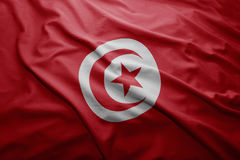 Tunisia bandery Fotografia Stock