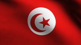 Tunisia country flag stock video
