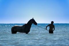 Tunisia. Djerba. Horse and rider taking a sea bath. Tunisia. South Tunisia. Djerba island. Beach of Sidi Mehrez. Horse and rider taking a sea bath stock images