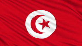 Tunisia flag. Tunisia flag, with real structure of a fabric stock video footage