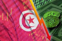 Tunisia flag and cryptocurrency falling trend with two bitcoins on dollar bills and binary code display. Concept of reduction Bitcoin in price and bad royalty free stock images