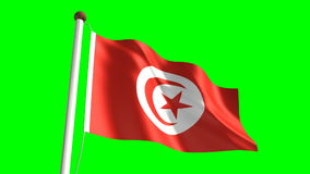 Tunisia flag. (seamless & green screen stock footage