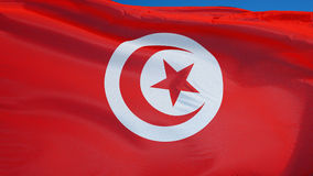 Tunisia flag in slow motion seamlessly looped with alpha stock video