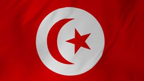 Flag of Tunisia with fabric structure looping 2 in 1. Tunisia flag waving animation symbol of the country stock video footage