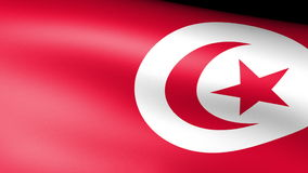 Tunisia Flag Waving. Video footage stock footage