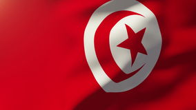 Tunisia flag waving in the wind. Looping sun rises. Style.  Animation loops stock video footage
