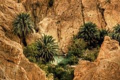 Tunisia moutain oasis Stock Photo