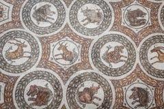 Tunisia traditional arabic decorative Stock Image