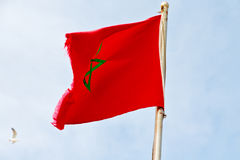 Tunisia  waving flag in the blue sky  colour and wave Stock Image