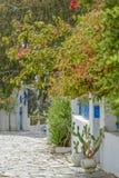 tunisia wioski zdjęcia royalty free
