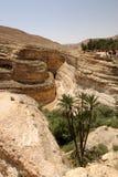 tunisian каньона Стоковое Фото