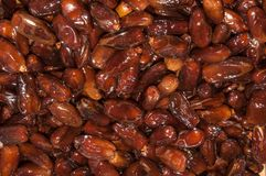 Tunisian Dates Royalty Free Stock Photo
