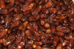 Tunisian Dates Royalty Free Stock Images