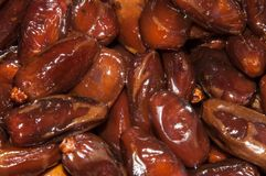 Tunisian Dates Stock Photos