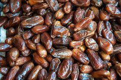 Tunisian Dates Stock Image