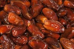 Tunisian Dates Stock Photography